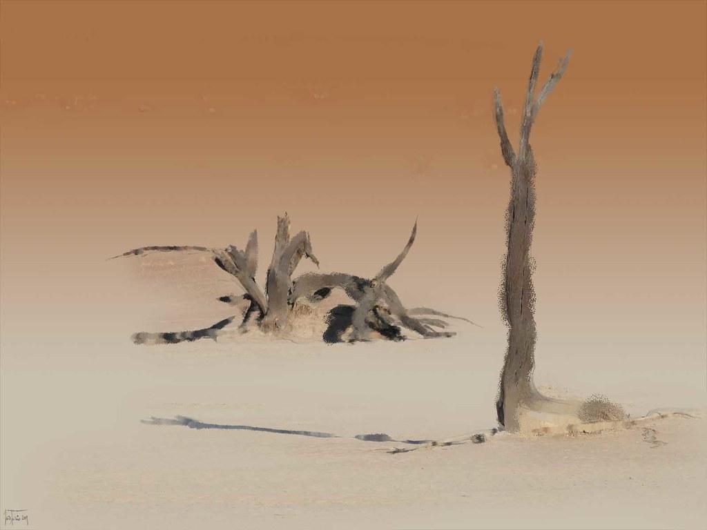 namibie tries (1)