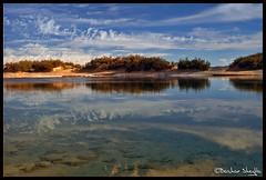 Ain Ed-Debbana Salt Lake ! (Bashar Shglila) Tags: trees sky lake reflection eye sahara water fruit clouds desert salt oasis libya عين 2007 flys بحيرة ain ghadames libyen صحراء ليبيا líbia واحة libië libiya aplusphoto liviya libija platinumheartaward bentaher либия panoramafotográfico البحيرات ливия الذبانة լիբիա ลิเบีย lībija либија lìbǐyà libja líbya liibüa livýi λιβύη לוב eddebbana الدبانة المالحة المجزم mejzem лиибийэ łibia лівія லிபியா లిబియా لىۋىيە