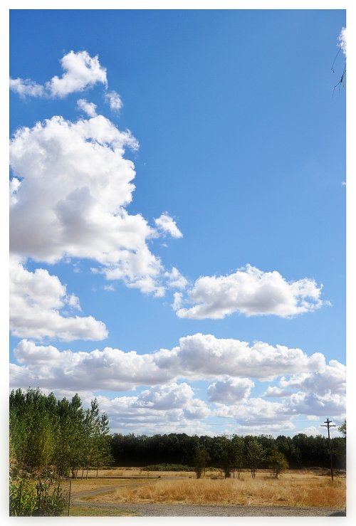 Sky View 1