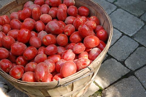 Bushel of San Marzano Tomatoes