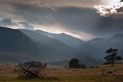 Moraine Park - Rocky Mountain National Park (Amicus Telemarkorum) Tags: sun clouds tress sunbeams rockymountainnationalpark morainepark