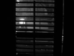 close to you 009 (dadou2007) Tags: closetoyou