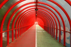 Choose your path (Tay-FUN) Tags: red green enstantane homersiliad flickrlovers tayfunkeçecioğlu