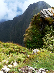 cliff edge (com4tablydumb) Tags: india tourism nature trek scenery wildlife hills uttaranchal himalayas monal northernindia uttarakhand tungnath chopta monalpheasant alpinehabitat