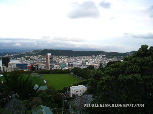 view of wellington 2