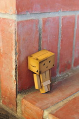 blue Monday (Jennifer ) Tags: danbo