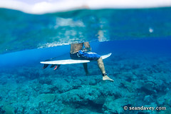 A surfer sitting on surfboard at Aku Bone in the Cook Islands  Sept 05 (Sean Davey Photography) Tags: color horizontal clarity surfers cookislands splitlevel surfart transparentbackground underwaterphoto photographynature seandavey tropicalphotos waveocean tropicalpictures oceanimages surflifestyle surfpeople tropicalphotographs photographybeach picturesoftheocean finephotographyart surfersphotographs imagessurf surfimage picturesnature picturesofocean photographersfineart surfphotosart