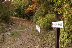 小野小町姿見の井戸 #1