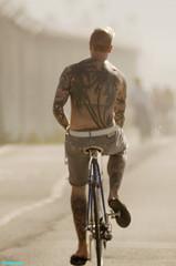 PalmTrees (mcshots) Tags: california autumn usa beach bikepath bike losangeles rocks stock socal bicyclist tatoos mcshots tatoo southbay tropics smrgsbord