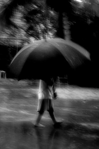 ´´´´ (rain!) ´´´´