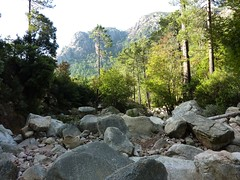 Déjeuner au ruisseau de Peralzone : vue vers l'aval