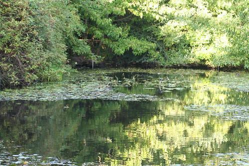 20090919 Edinburgh 20 Royal Botanic Garden 508