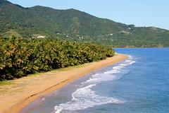 Intertropical Zone (gcarmilla) Tags: ocean sea wallpaper panorama beach nature palms landscape mare puertorico natura tropical caribbean palme spiaggia paesaggio oceano caribe caraibi bythesea patillas tropicale ¡quépasapuertorico
