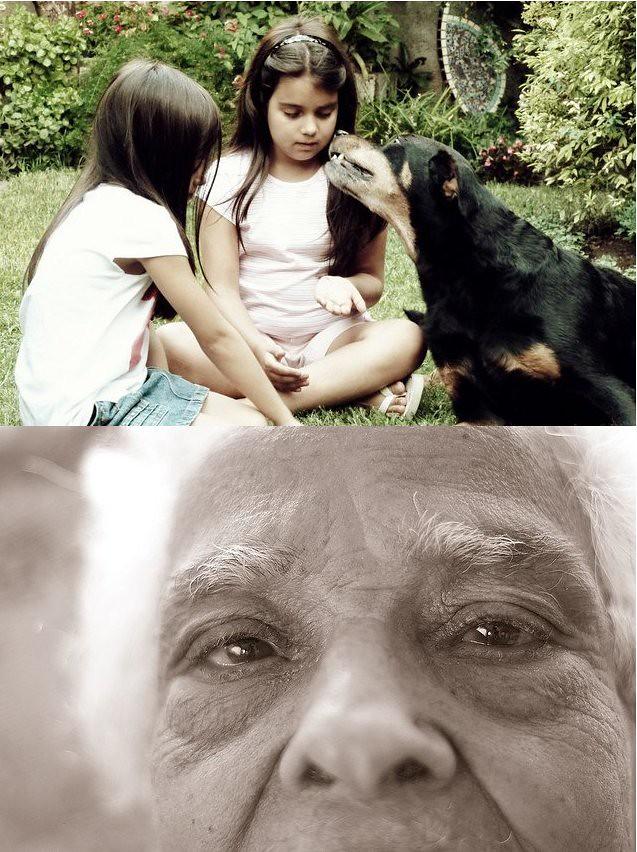 Infancia - Tercera Edad