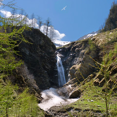 Soaring above the Krumltal waterfall (Bn) Tags: park blue light shadow sky sun snow mountains alps fall ice nature water walking geotagged heidi austria golden waterfall spring woods topf50 rocks ray wasserfall eagle hiking wildlife falls adventure evergreen alpine national valley goldenvalley melt soaring gliding spar spruce larvae finest seekers steep birdofprey marmots hohe sailplane rauris lariks unspoilt tauern 50faves krumltal wasserfallalm rauristal bartgeier beardedvulture lammergier kruml saariysqualitypictures dastaldergeier taldergeier valleyofvultures schaflegerkopf 2788m thekingsoftheair dalvandegieren geo:lon=12925391 geo:lat=47107596