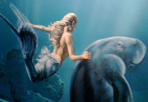 Mermaid and dugong