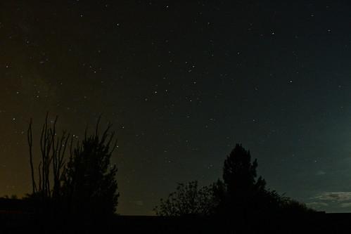 Twinkle Twinkle, Tons of Stars!