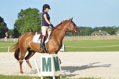 rocking horse 047
