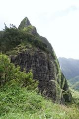 IMG_1520 (ptath2) Tags: hawaii palilookout ohau