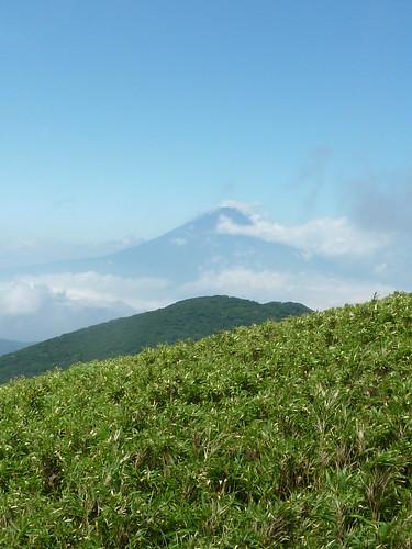 Detalle Fuji Hakone