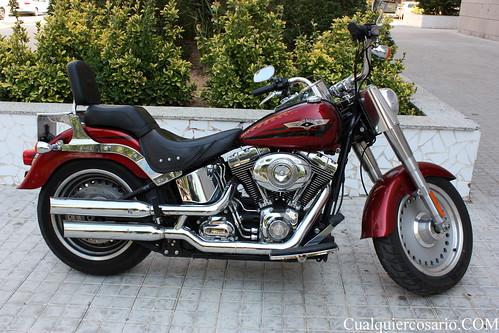Harley Davidson ( III )