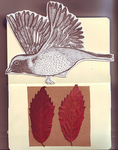 autumn. moleskine