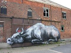 streetart in doel (wojofoto) Tags: doel belgie belgium streetart graffiti roa wojofoto artland abandoned wolfgangjosten
