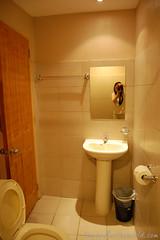 Superior Room - Bathroom - Water Closet and Pedestal Sink