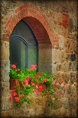 Italian Windows #16, Monteriggioni (h_roach) Tags: old flowers italy window europe arch stonework geranium blooming flowerbox gettyimage textureart theperfectphotographer