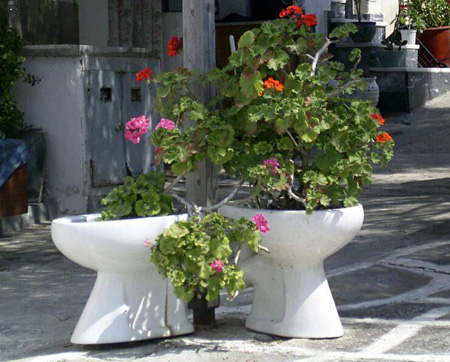 Toilet flower bed