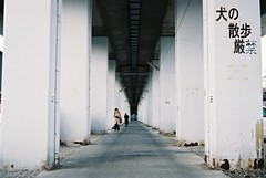 into the distance (librarymook) Tags: camera film japan fuji natura iso 1600 chiba  fujifilm ichikawa  classica
