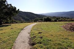Vista point (Håkan Dahlström) Tags: california usa verde green nature grass groen unitedstates united vert vista states grün devonshire grön grn