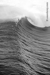 A helicopter view of a big ocean wave breaking off Puaena Point, on the north shore of Oahu, Hawaii (Sean Davey Photography) Tags: pictures blackandwhite bw usa green nature vertical hawaii energy power wave alternativeenergy curl curling bigwaves greenenergy greenpower oceanwave seawave alternativepower stormsurf hugewaves stormwaves oceanswell hugesurf northshoreoahu seandavey oceanpower seaswell dangeroussurf powerfulwaves photographyfineart finephotographyart curlingwave wavesenergy seawaveenergy oceanenergy oceanwavepictures seandaveyphotography seandaveyfineart