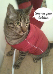 Fujur Fashion