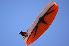 snorvliegen5 (raymondklaassen) Tags: sport nederland flevoland parachute almere vliegen almerebuiten raymondklaassen snorvliegen