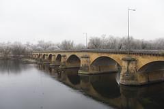 Le Pont des Morts (Fabien Husslein) Tags: metz moselle lorrain france pont morts hiver winter frost givre arches