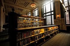 Understanding (KC Mike Day) Tags: library lights fixtures daydream light window shelves bookshelf books downtown read reading