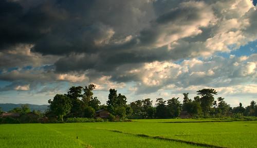 Chitwan 23