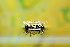 King of splash (Dan. D.) Tags: macro water speed canon photography high waterdrop flash 100mm 5d crown remote setup splash f11 f28 580ex highspeed highspeedphotography alemdagqualityonlyclub