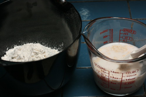 Sourdough Biga Ingredients