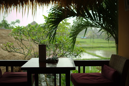 Cafe,rice field and rain