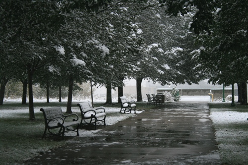 Snow MN 10/12/09