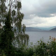 Loch Ness (3) (astroJR) Tags: uk greatbritain lake tree water square landscape scotland eau unitedkingdom lac willow gb loch paysage arbre lochness ness carr ecosse saule royaumeuni grandebretagne wateroceanslakesriverscreeks scotlandslandscapes squarescotland
