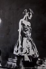 CFYE Street Art Project (StonieB) Tags: streetart holland art netherlands amsterdam project graffiti stencil nederland indigo freehand cfye