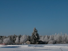 Winter in Finland (topiax) Tags: blue winter snow ice moment bluemoment