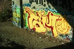 TDM (DonaldM Photography) Tags: graffiti dam damn much too tdm
