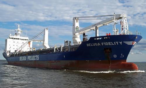 Beluga Fidelity