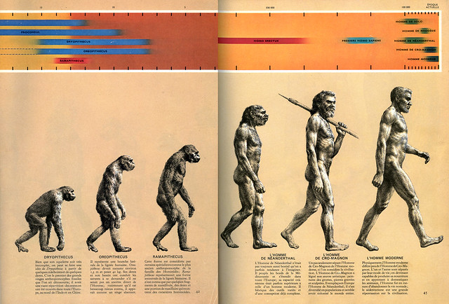 Rudolf Zallinger, The Road to Homo Sapiens, illustration pour The Early Man, 1965 (dépliant fermé).