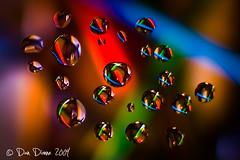 DD0_3480 (TroutBum51) Tags: water colors droplets nikon colorful bokeh sb600 d300 sigma30mmf14exdchsm strobist