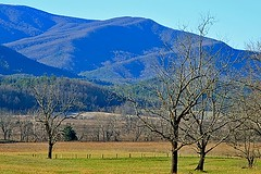 Tenn.11-29-09 019 (OUTLAW PHOTO) Tags: tn gatlinburg scenics cadescove smokeymountains canonphotography douglasdam